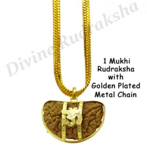 1 Mukhi Rudraksha with Golden Pendant & Chain
