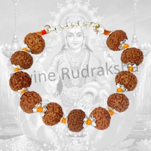 7 Mukhi Mahalakshmi Bracelet in Thread with Silver Caps