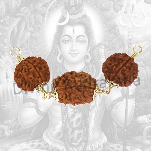 Chinta Nashak Rudraksha Combination