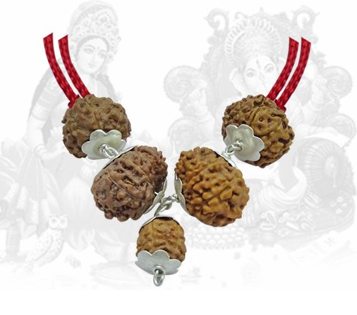 Good Luck Rudraksha Pendant Indonesian
