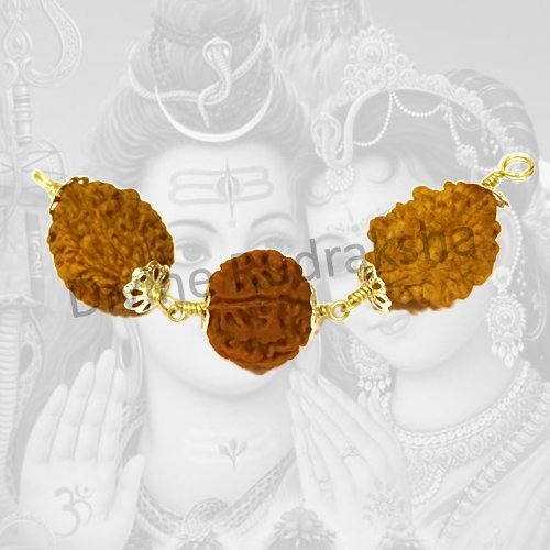 Lagan Yog Rudraksha Power Combination