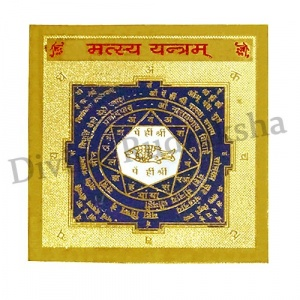 Matsya Yantra - For Vastu Dosha Removal, Protection from Evil Effects